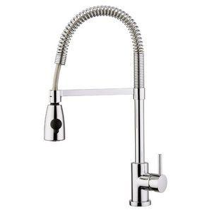 Cheap Franke Taps : Cheap kitchen tap option - Franke Syrius Flex Kitchen Mixer