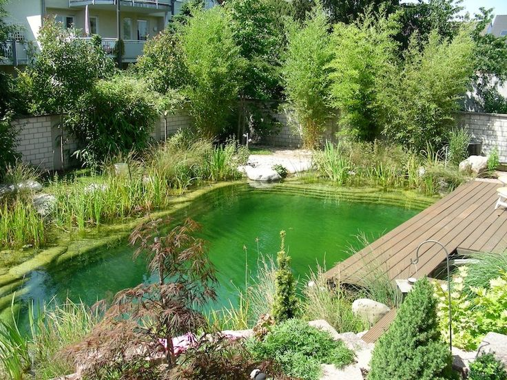 piscine naturelle en allemagne water garden pinterest. Black Bedroom Furniture Sets. Home Design Ideas