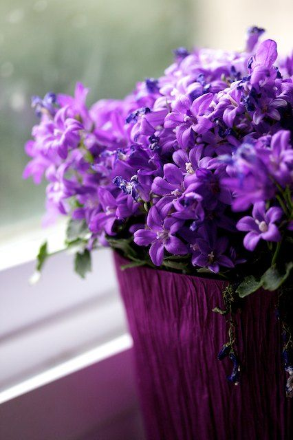 pretty purple flowers  - for use in the centre pieces....