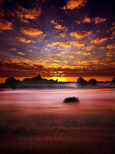 Foggy sunrise  colors of nature  Pinterest