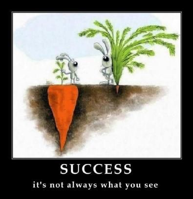 success it's not always what you see.  great visualization of this in the days of the superficiality of facebook