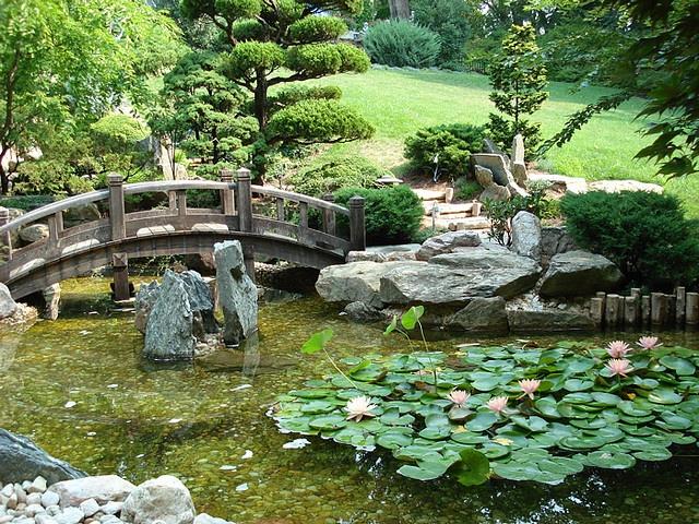 zen water garden gardening pinterest