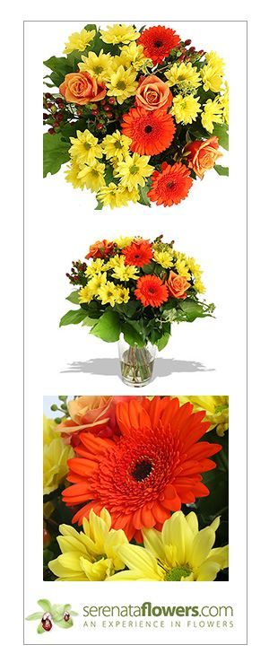 cakes and flowers online delivery in bangalore 1 on cakes and flowers online delivery in bangalore