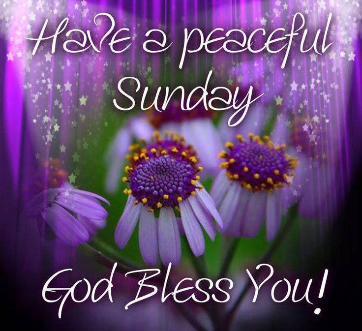 Good Morning Everyone Sunday : Sunday quotes god quotesgram