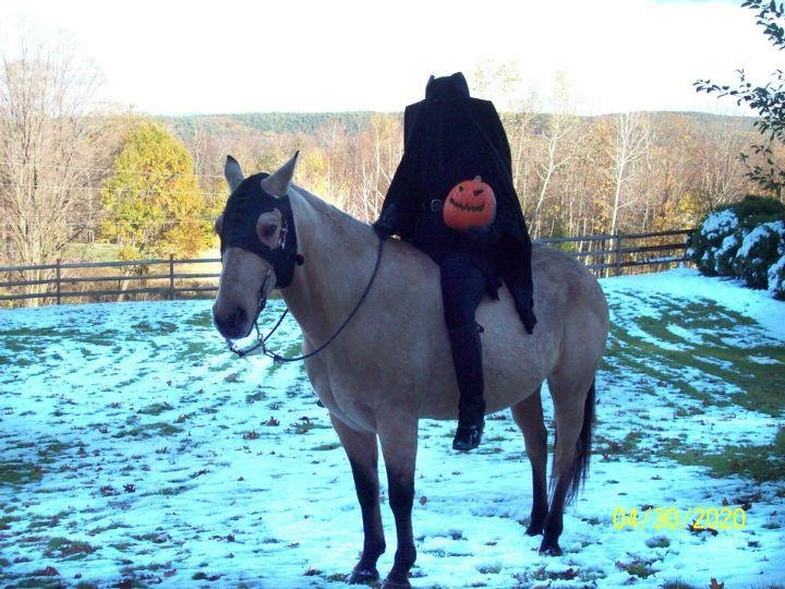 Headless horseman costume with horse