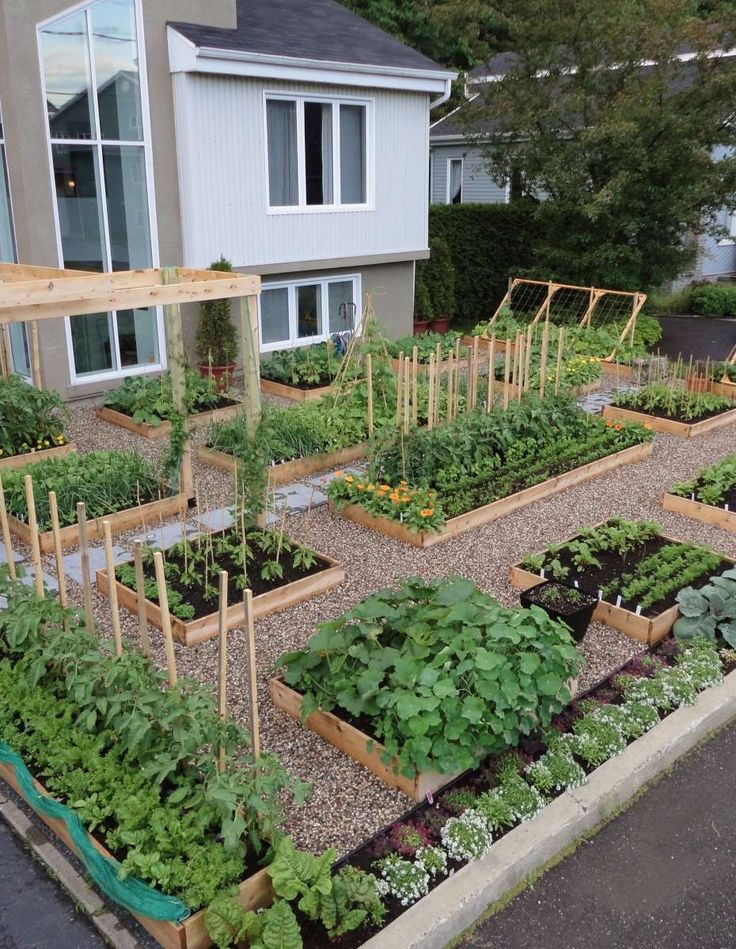 Maybe not the front yard but I'm loving the symmetry of this.  I wonder if the gravel bed would really keep weeds down?    Front Yard Vegetable Garden Seattle | Pallet Potting Bench PEACH TOMATO AND MOZZARELLA CROSTINI