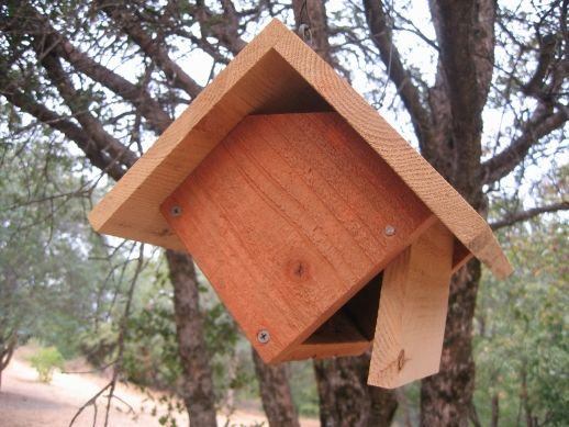 Free Birdhouse And Nest Box Plans For Several Bird Species