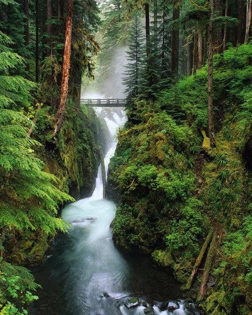 Waterfall Bridge, Oregon
