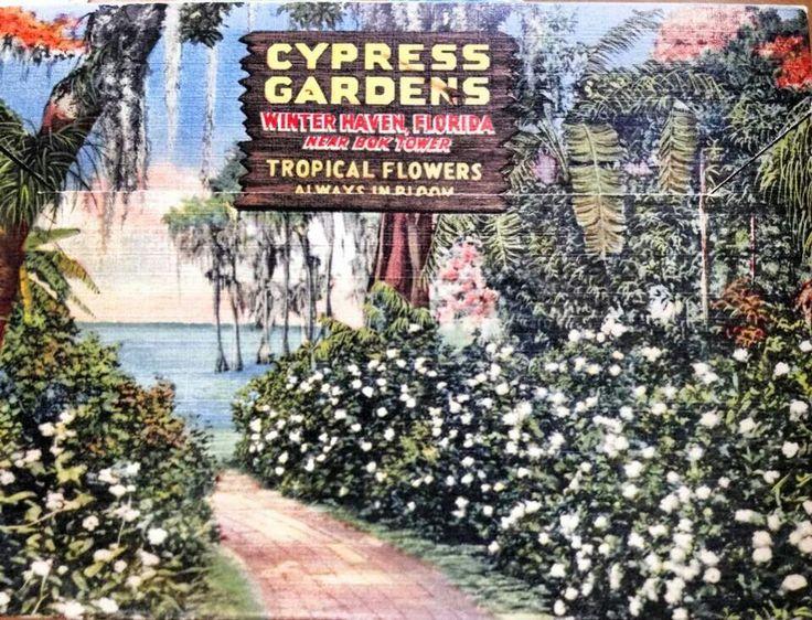 Vintage Cypress Gardens Florida History Pinterest