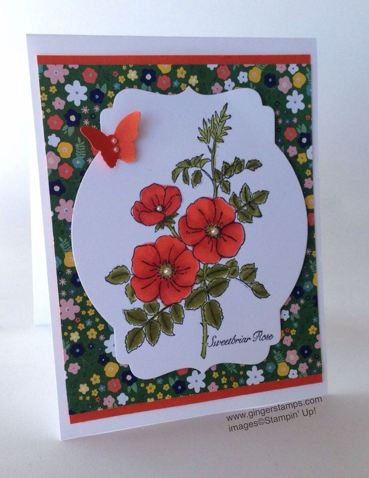 Stampin Up 2014 2015 Catalog Party Invitations Ideas