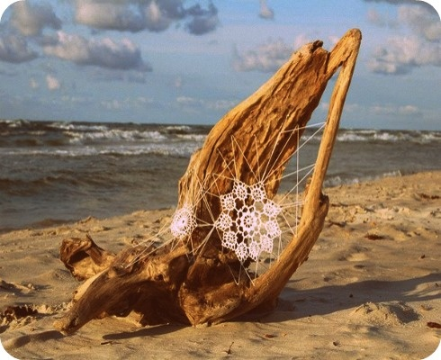 driftwood and lace