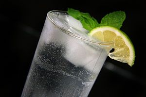 Tips on How to Make an Authentic Mexican Mojito - wikiHow