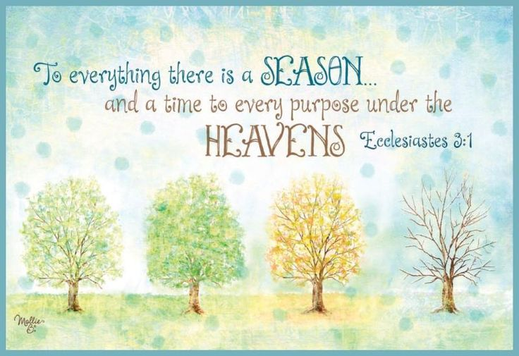 Image result for Ecclesiastes 3:1