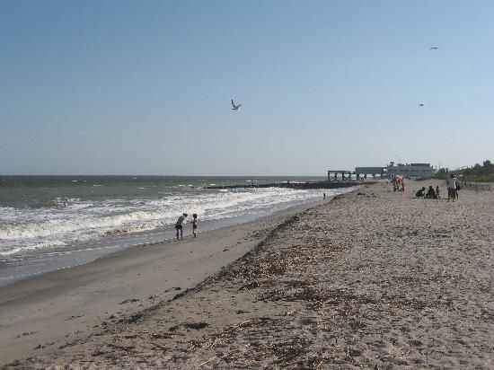 South carolina edisto island road trip pinterest for South carolina surf fishing