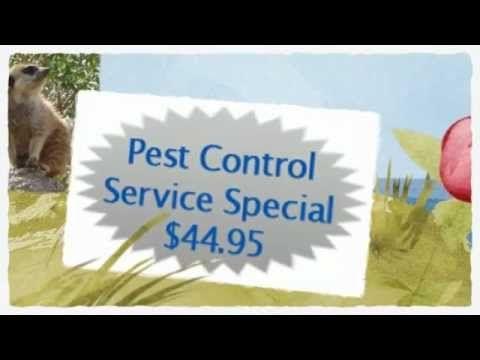 granbury flower mound pest control