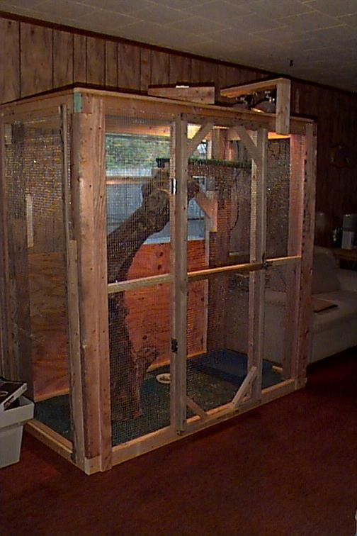 How to Build an Iguana Cage photo