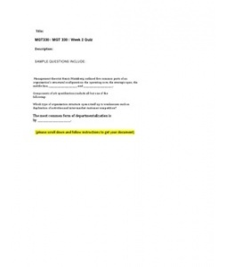 mgt 330 week 4 organizing paper