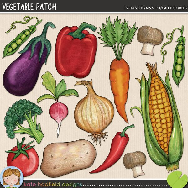 Vegetable patch clip art pinterest for Vegetable patch
