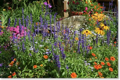 Perennial flower bed outdoor spaces pinterest for Best plants for flower beds
