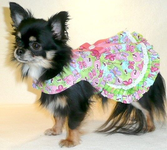 Dog clothes sweet summertime dog dress chihuahua yorkie - Dog clothes for chihuahuas ...