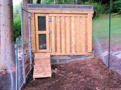 Chicken coop made of pallet wood crafts pinterest Chicken coop from pallet wood