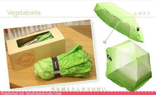 Packaging   Vegetabrella