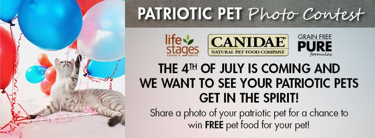 6abc 4th of july contest
