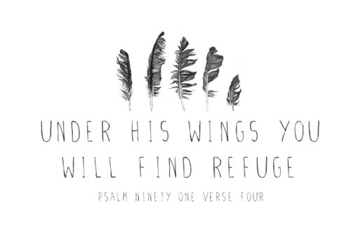 Psalm 91:4   The sweetest comfort.