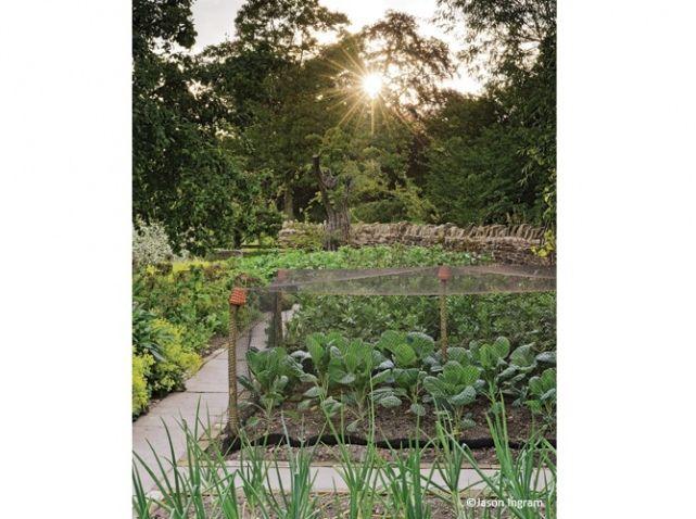 Alpinepoppy jardin anglais legumes for Jardin anglais