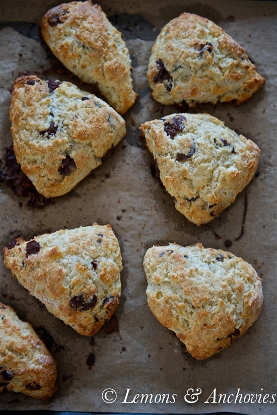 Chocolate Coconut Scones | From the oven Scones, breads and rolls ...