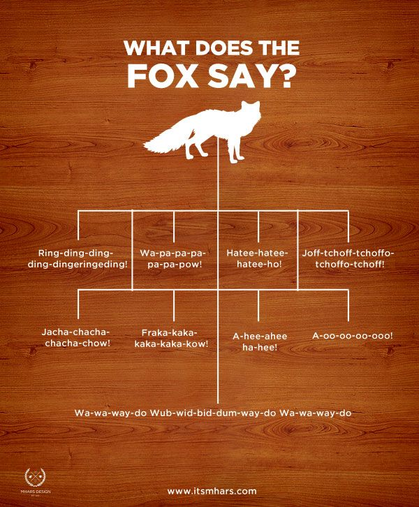 The Fox by Ylvis - Collection of sounds from the music video. What does the fox say?