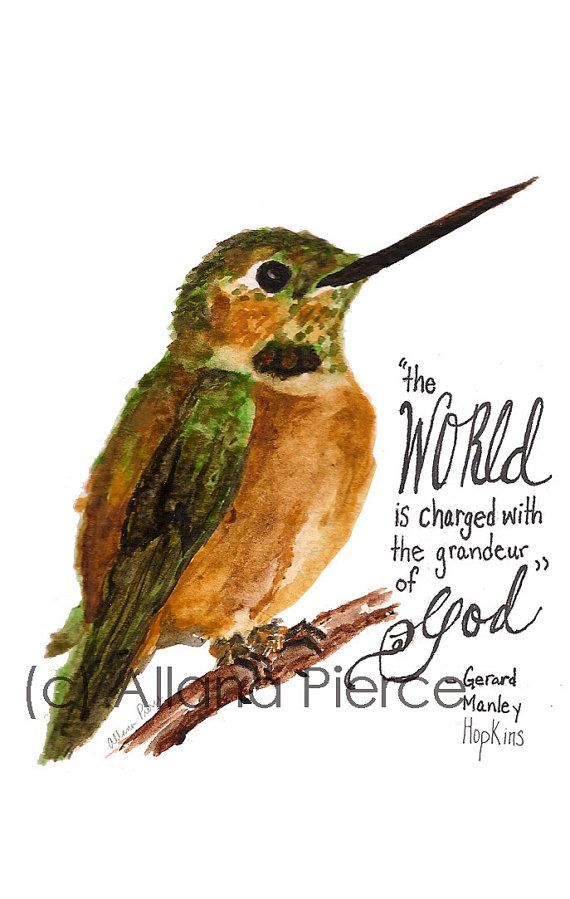 hummingbird quotes and sayings quotesgram