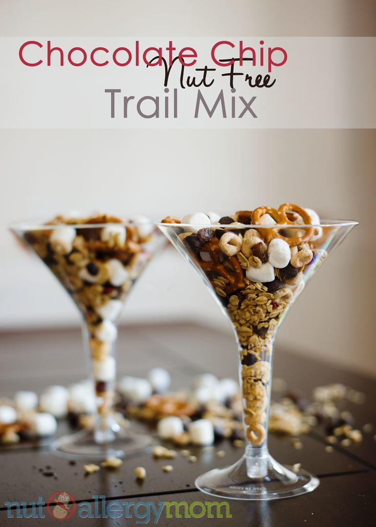 Nut Free Trail Mix - Chocolate Chip, Cherries & Granola | Recipe