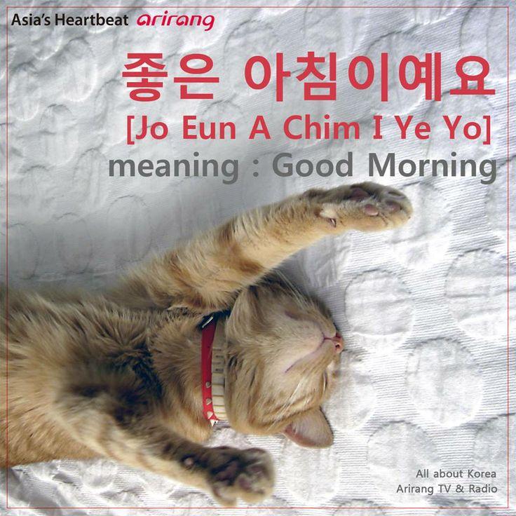 Translation Of Good Morning In Korean : Good morning talk to me in korean pinterest