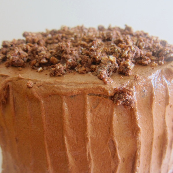 Devil's Food with Hazelnut Crunch Cake | Favorite Recipes ...