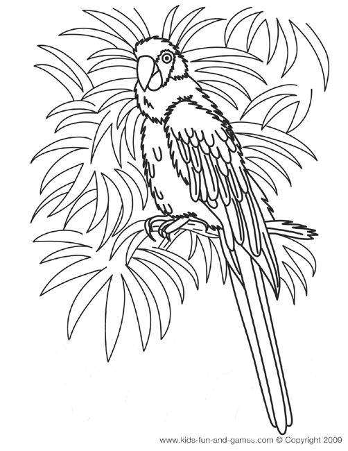 Coloring Pages For Hawaii : Hawaiian coloring pages parrot luau ideas pinterest