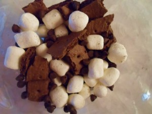 150 Calorie Instant Chocolate Fix. Mini marshmallows, chocolate chips and broken chocolate graham crackers.