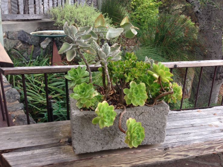 planter ideas outdoor living space pinterest