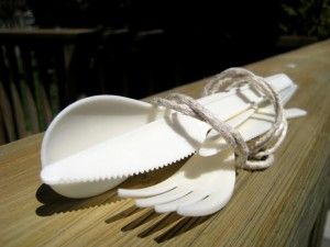 Vegware all-natural, biodegradable cutlery
