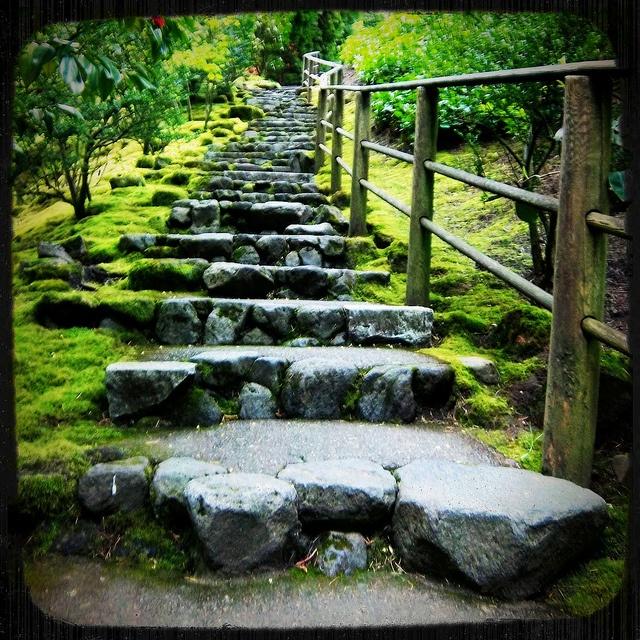 Portland Japanese Garden Trefaes Japonica Pinterest