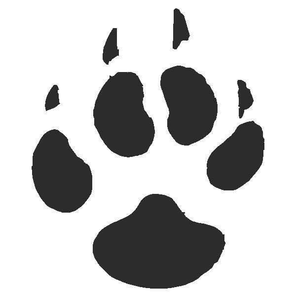 Coyote paw print tracks decals stickers liked on polyvore