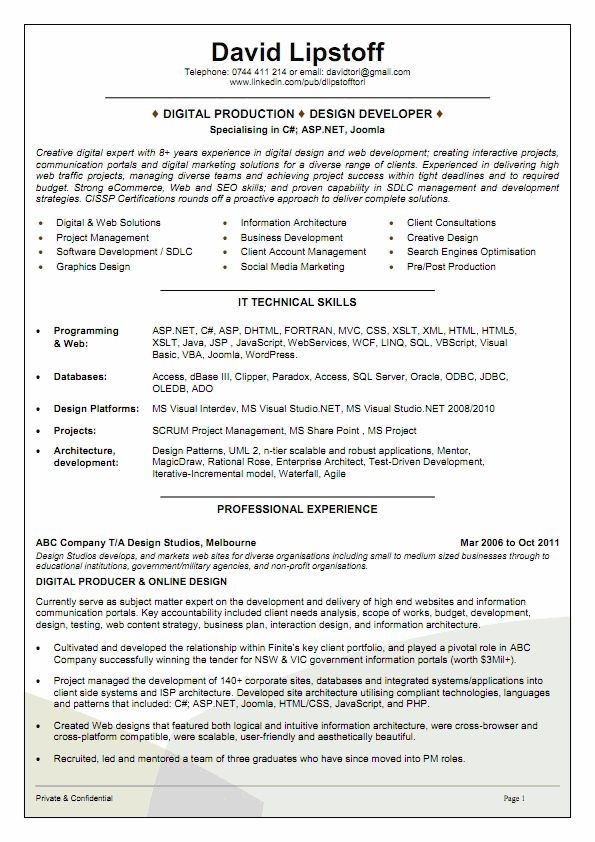 software engineer cv example