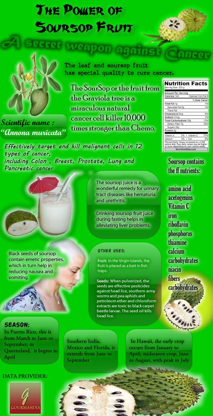 Soursop Fruit Cancer | ... infographics – Infographics Community » The Power Of Soursop Fruit