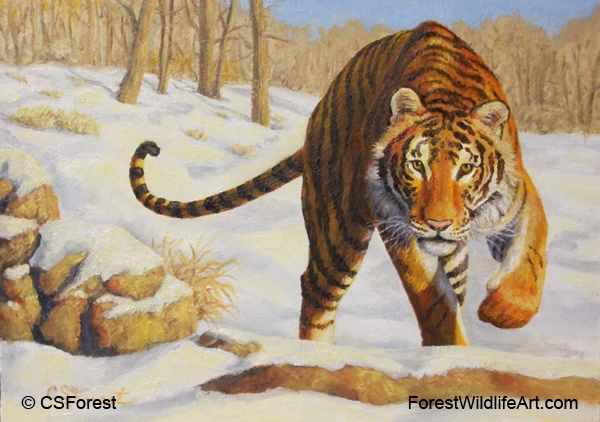Oil paintings wildlife and animal art by crista forest sold