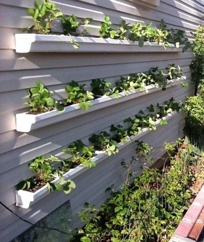 gutters as planters vertical garden pinterest