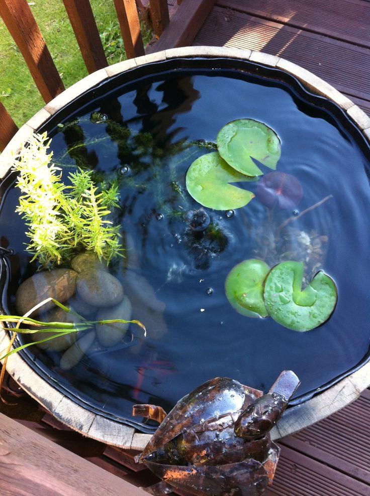 Barrel Fish Pond Home Pinterest