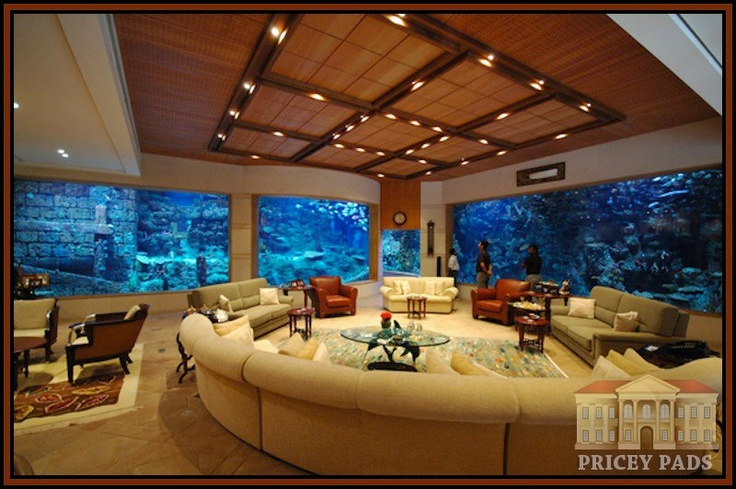 A Whole New Meaning To Indoor Aquarium Beautiful