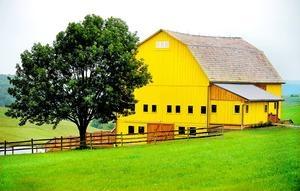 Fabulous Yellow Barn turned into a Winery