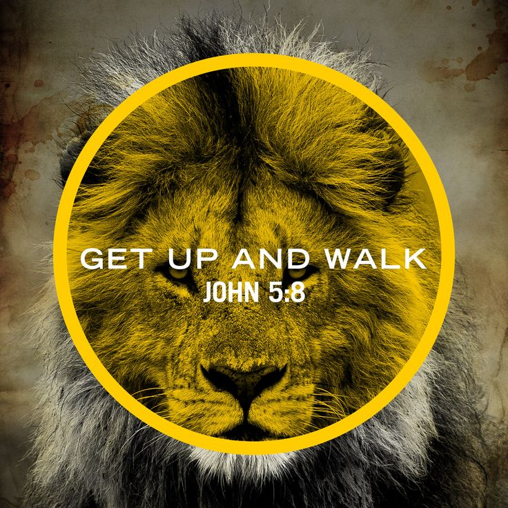 "Then Jesus said to him, ""Get up! Pick up your bed and walk."" (John 5:8)  It's time to get up! It's time to stop living life on the ground, it's time to wipe the gravel off your face, and go after your God given destiny. I don't have to tell you that life is hard, I don't have to tell you that life will knock you down, but I will tell you that we serve a God that is bigger than any problems we face, we serve a God that will give us the strength we need to overcome the struggles of life."