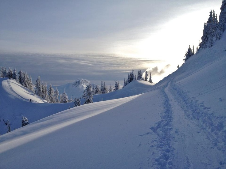 Mt baker, skinning out the arm  Ski culture  Pinterest